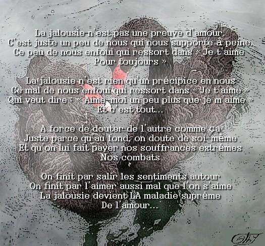 Jalousie3